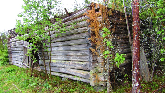 Сохранившиеся остатки одного из бараков.